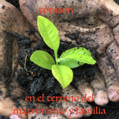 El desafío de crecer, Parte 2